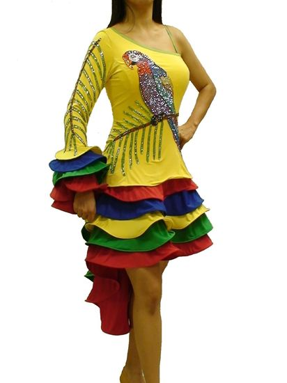 Picture of Poly Wants a Cracker Latin Dress