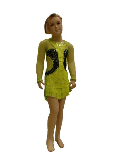 Imagen de Girl Leopard Latin Dress
