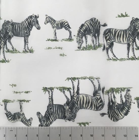 Zebras in the Wild (Poly Cotton Fabric) in Houston