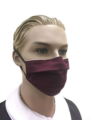 Buy Maroon 005 COVID-19 coronavirus Fashion Face Mask (3-layer) in Houston and Sugar Land